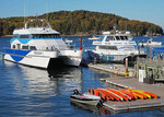 Tour boats at Bar Harbor, Maine, cruise the Porcupine Islands on the New England coast.