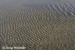 Ripples in beach sand under water