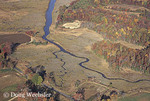 Salt marsh, aerial view in autumn