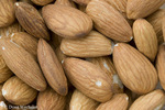 Almonds; Prunus dulcis; raw nuts