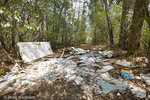 Garbage dumped in forest; NJ, Belleplain State Forest