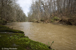 Wissahickon Creek; PA, Fairmount Park, Wissahickon Cr.