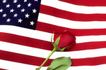 Flag With Red Rose, Appleton, Wisconsin