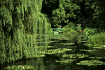 Monet Water Garden in Giverny, France
