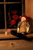 Rag Doll in Window, Holland, Michigan