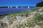Sailboats in Door County, Wisconsin
