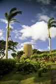 Sugar Mill & Palm Trees, Nevis