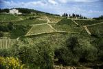 Tuscany countryside, Italy