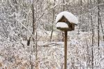 Birdhouse with snow, Appleton, Wisconsin