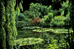 Monet Water Gardens, Giverny, France