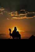 Camel Rider at Sunset, Giza, Egypt
