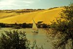 Feluccas on the Nile, Egypt