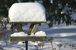Snow on Birdfeeder, Appleton, Wisconsin