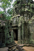 Ta Prohm Temple Ruins, Cambodia