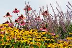 Flower Garden, Egg Harbor, Door County, Wisconsin