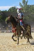 Knight & Horse in Battle, Renaissance Faire, Bristol, Wisconsin