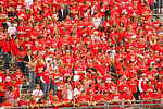 UW-Madison Badger Football Fans, Camp Randall, Madison, Wisconsin