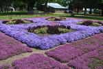 Le Moyne Star Quilt Garden1, Nappanee, Indiana