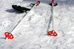 Cross Country Ski poles in snow, Door County, Wisconsin