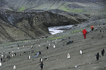 Penguins and People all over, Antarctica