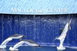 Maui Ocean Center,