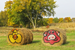 Hay Bale Faces in Fall, Hortonville, Wisconsin