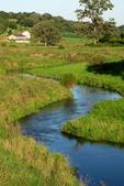 River in Hidden Valleys, Driftless area, Southwestern Wisconsin