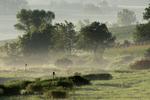 Fog in early morning, Driftless area, Southwestern Wisconsin
