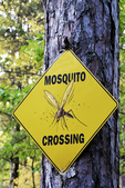 Mosquito Crossing Sign, Sunrise Lodge, Land O'Lakes, Wisconsin