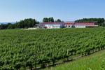 Chateau Grand Traverse Winery, Old Mission Peninsula, Michigan