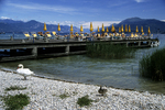 Beach and Umbrellas, Sirmione, Lake Garda, Italy