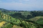 Tuscany Countryside, Tuscany, Italy
