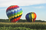 Hot Air Balloons in Cornfield, Seymour, Wisconsin