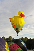 Duck Hot Air Balloon in Sky, Seymour, Wisconsin