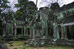 Ta Prohm Temple Ruins, Siem Reap, Cambodia