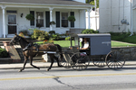 Amish Buggy on Road, Paradise, Lancaster County, Pennsylvania