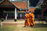 Monks at Wat Phrathat Haripunchai, Chiang Mai, Thailand