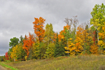 Fall Color with Storm in Northern Wisconsin