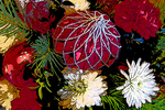 Christmas Flowers With Poster Edges, Appleton, Wisconsin