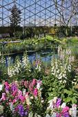 Milwaukee Domes & Spring Flower Show, Milwaukee, Wisconsin