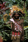 Huli Wigman Chief, Tari Highlands, Papua New Guinea