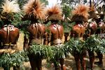 Huli Wigman at Sing Sing, Tari Highlands, Papua New Guinea