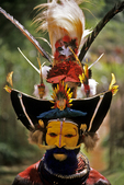 Huli Wigman Dancer at Sing Sing, Tari Highlands, Papua New Guinea