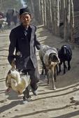 Going to Kashgar Sunday Market, Kashgar, China