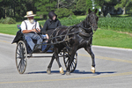 Amish Couple in Buggy, Columbia County, Green Lake, Wisconsin