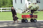 Amish Kids in Driveway, Columbia County, Green Lake, Wisconsin