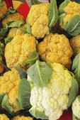 White and Yellow Cauliflower for Sale, Farmer's Market, Appleton, Wisconsin