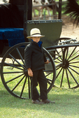 Amish Boy and Buggy at Auction, Bonduel, Wisconsin