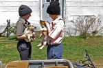 Amish Boys with Puppies for Sale at Auction, Bonduel, Wisconsin