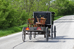 Amish Buggy with Chairs on Wagon, Columbia County, Wisconsin